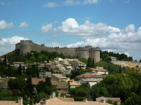 Le fort Saint-André vu d'Avignon