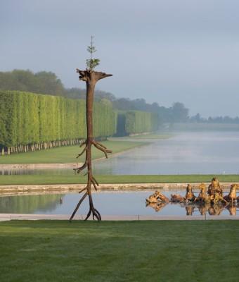 Giuseppe Penone, Le foglie delle radici, 2011 © Tadzio